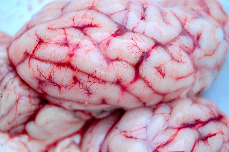 что такое серозный менингит и как от него защититься