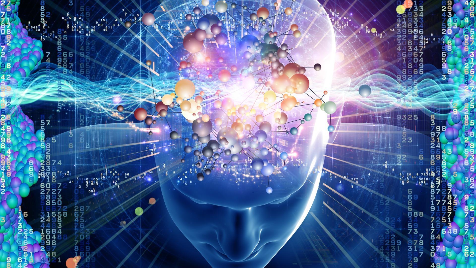 Нейроны голубого пятна и обучение