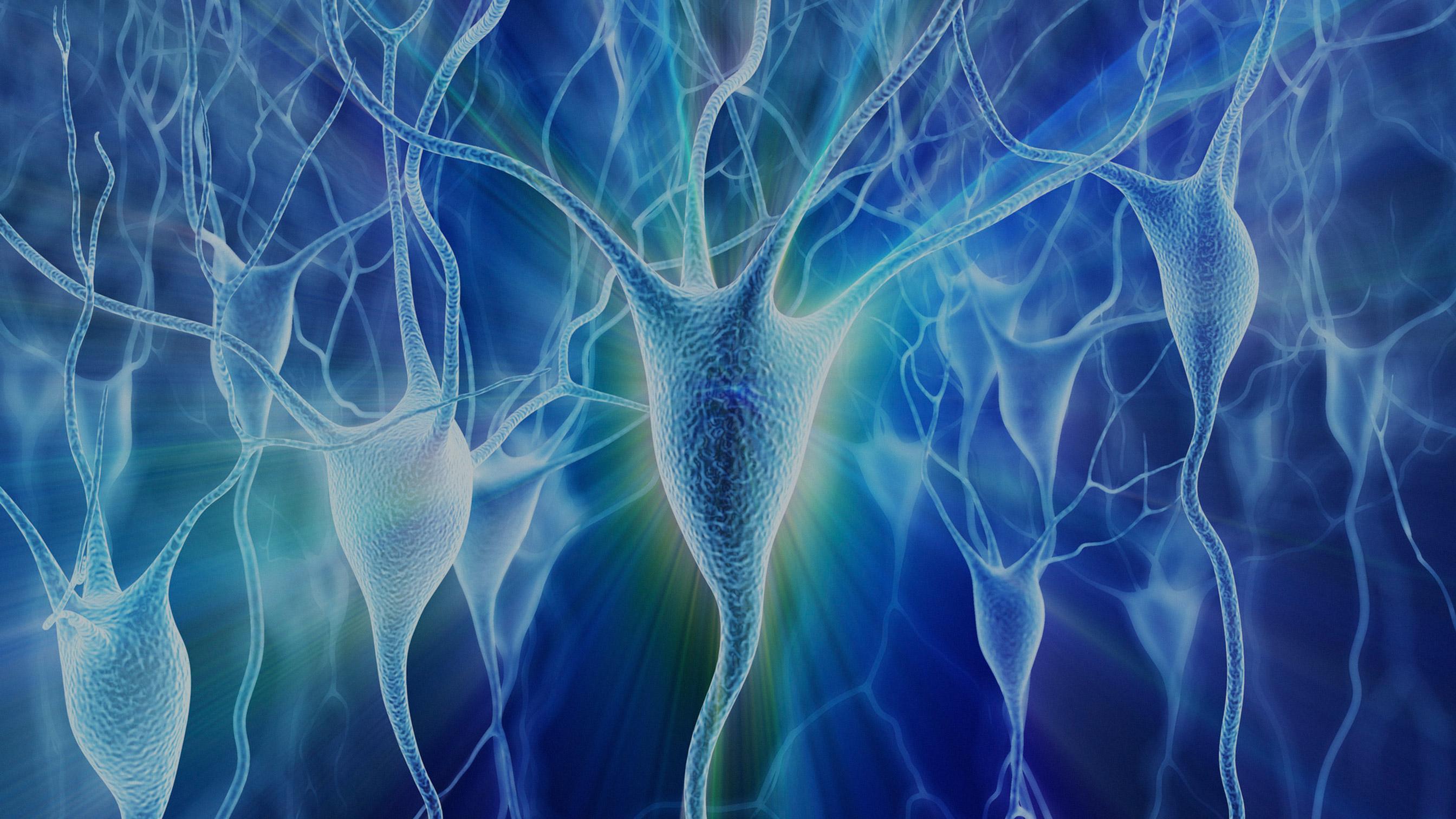 BrainStorm опубликовала данные о лечении БАС методом NurOwn