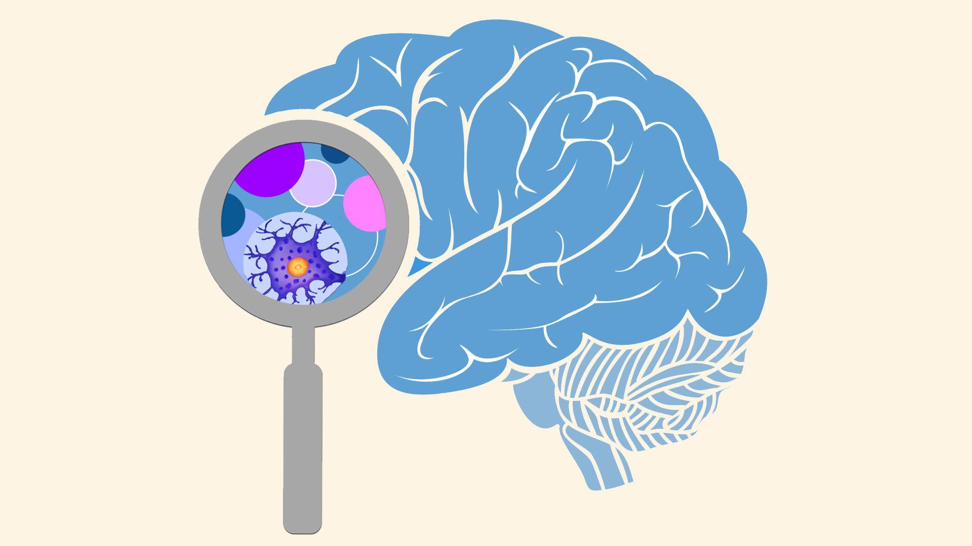 Новая генная терапия предотвращает развитие рассеянного склероза