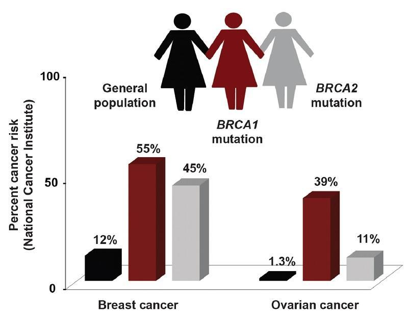 Клетка для раковой опухоли