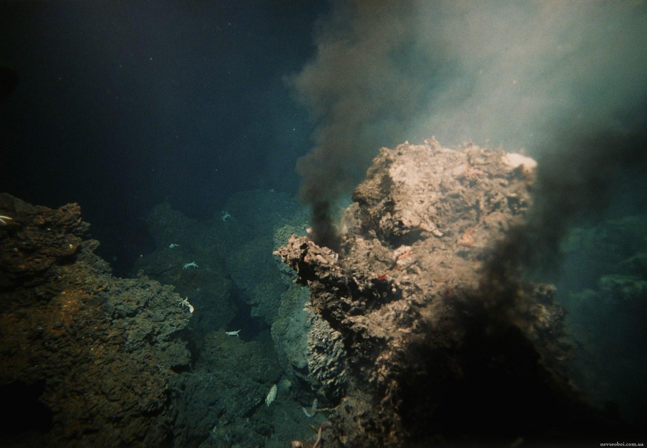 Последний общий предок жил на водороде