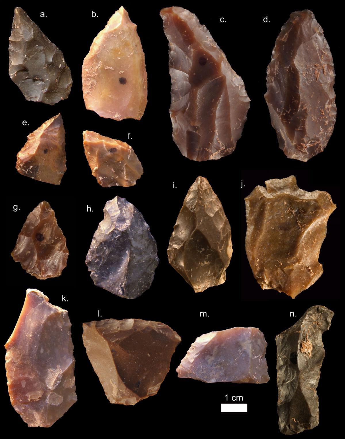 древнейшие останки Homo sapiens могут переписать историю нашего вида