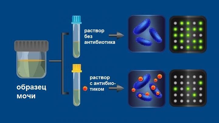 супероружие против супербактерии