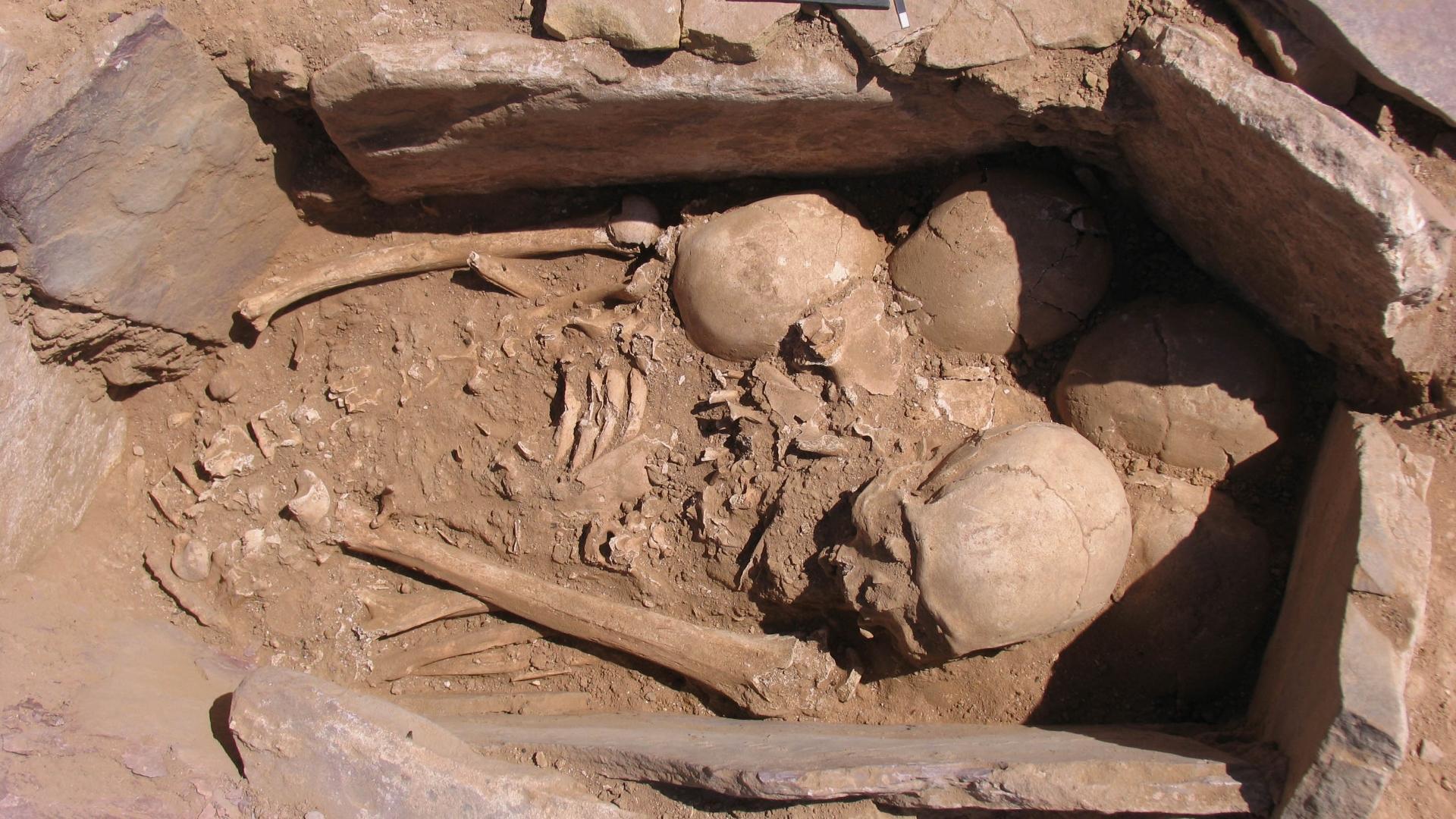 Бродячие мертвецы: в Иордании археологи нашли очень странную деревню