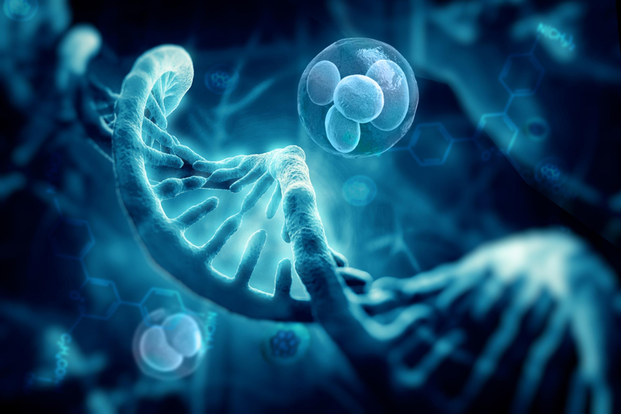 FDA одобрило генную терапию для лечения определенных типов крупноклеточной В-клеточной лимфомы