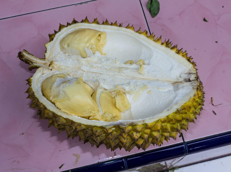 ученые нашли ген «вонючести» дуриана