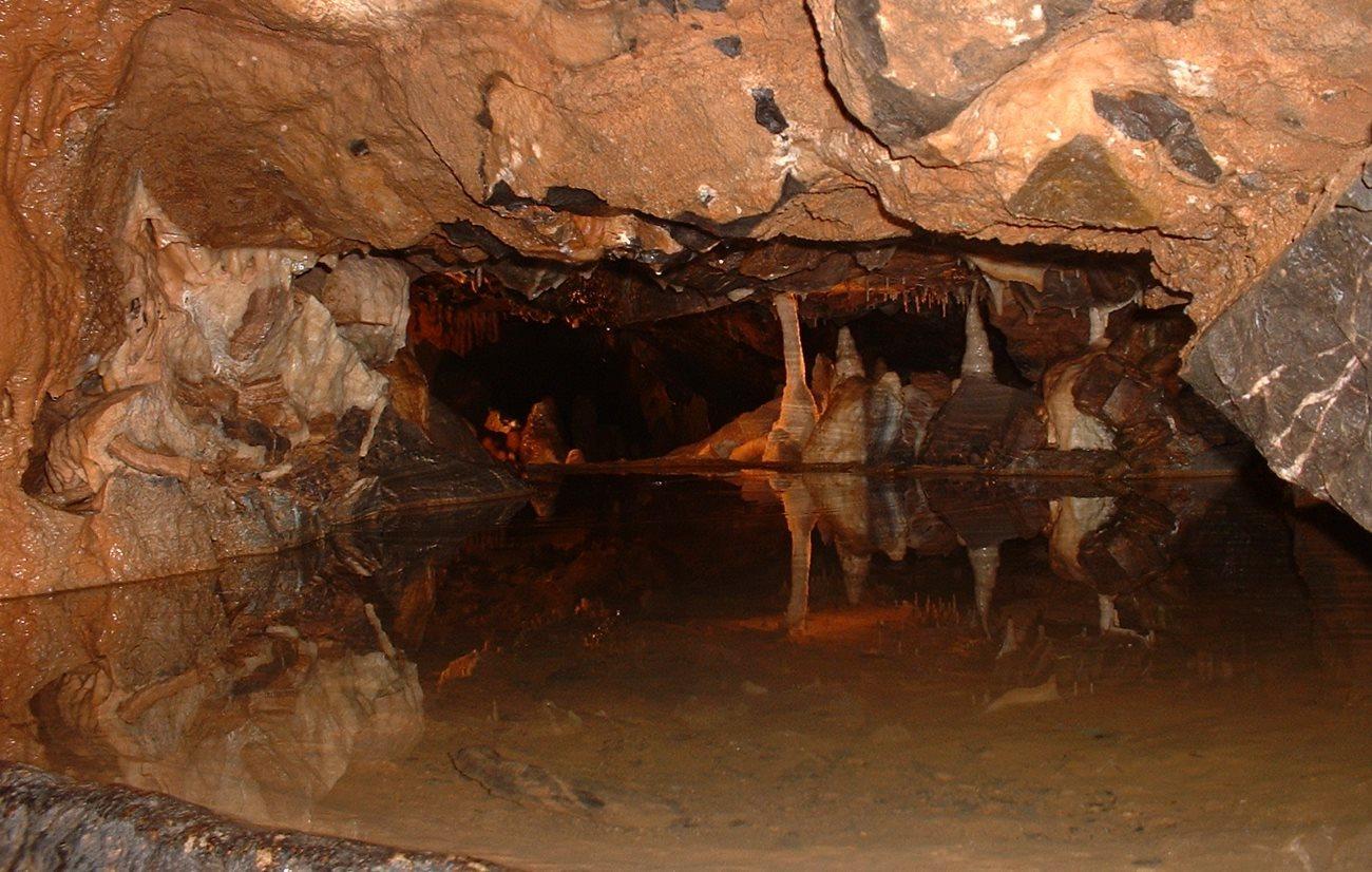 Людоеды из пещеры Гофа гравировали кости своих жертв