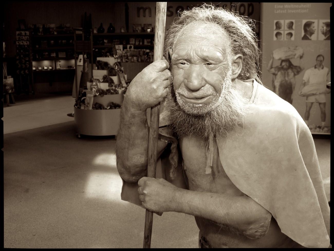 современные люди стали еще ближе к неандертальцам