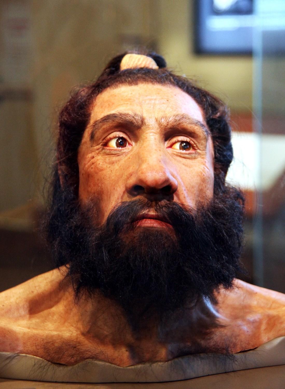 депрессия по-неандертальски