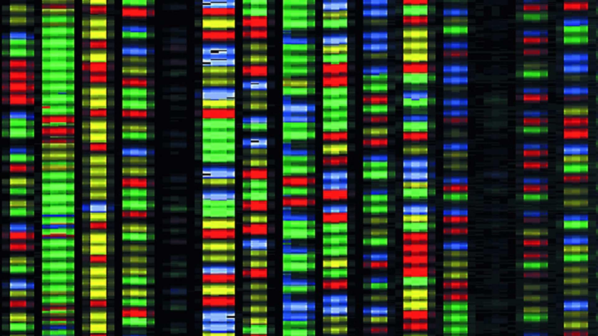 Геном человека: редактировать или не редактировать?