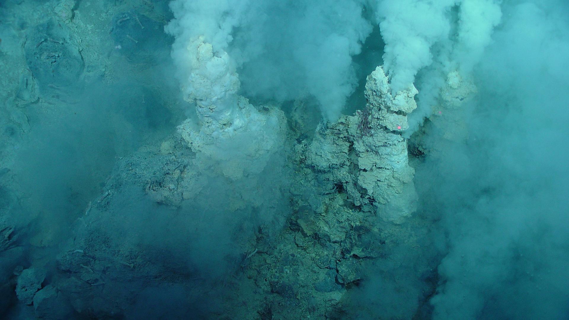Микробы подводных вулканических хребтов пролили свет на эволюцию дыхания