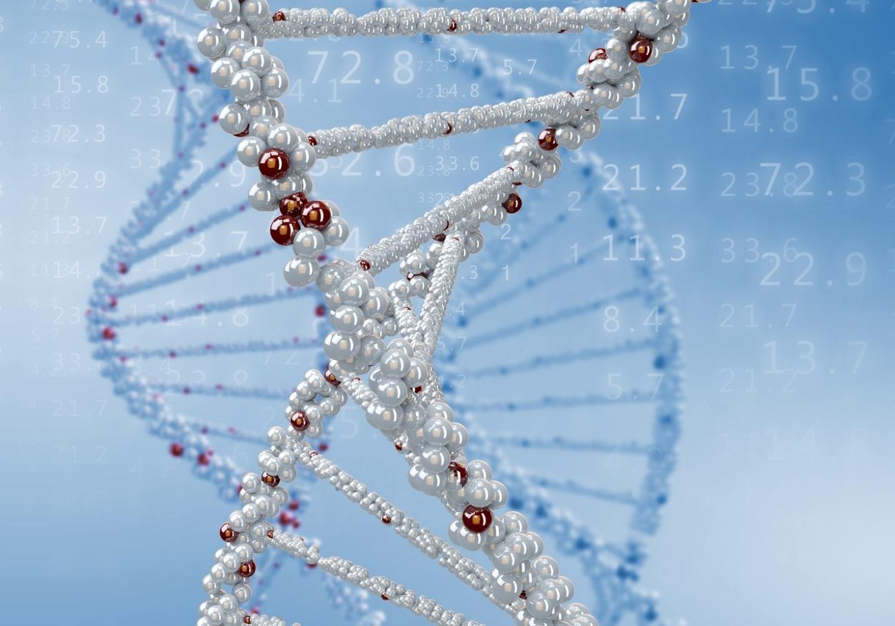 как длинные РНК победили короткие