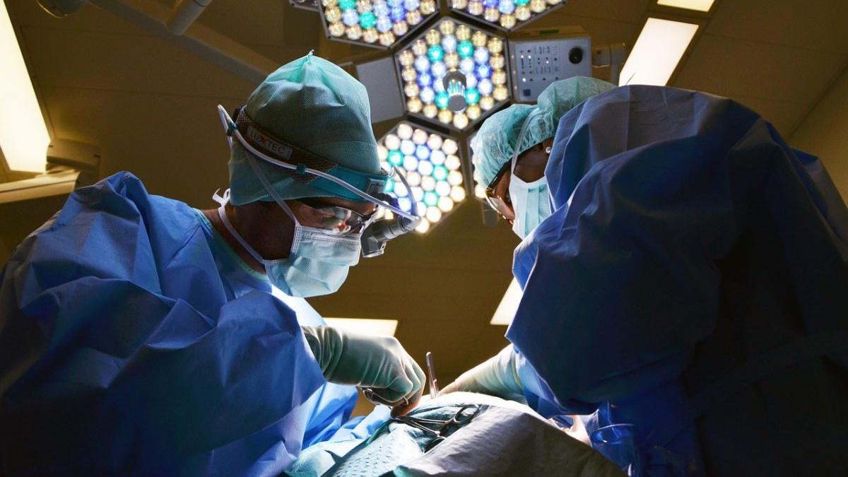 биоритмы и кардиология