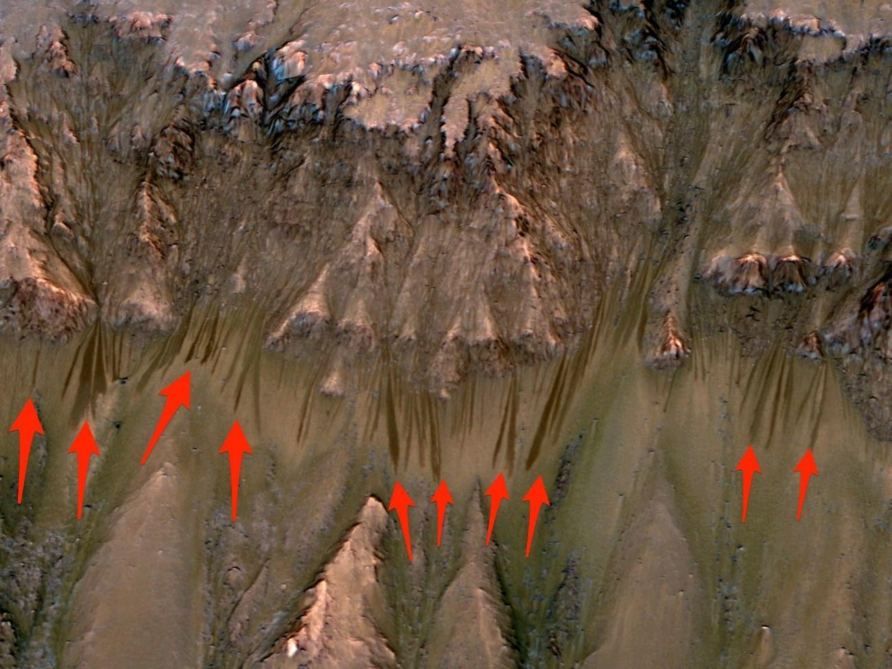 Выносливость микробов проверили в «марсианской» воде