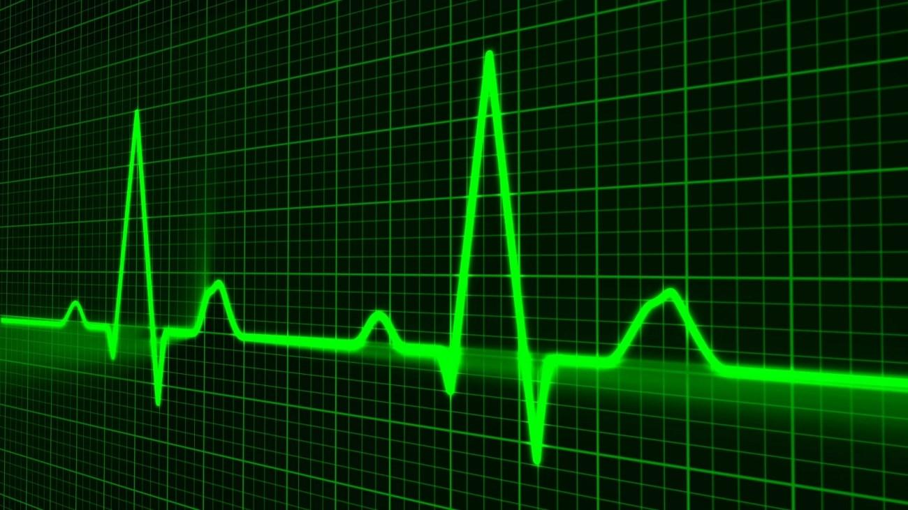 Иммунные клетки помогают сердцу биться