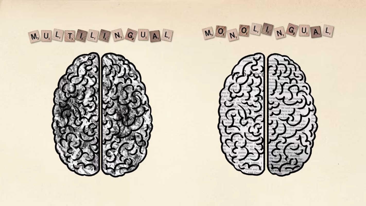 Мозг не видит разницы между диалектами и языками