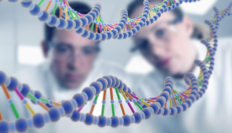 Великобритания разрешила редактировать геном человеческих эмбрионов