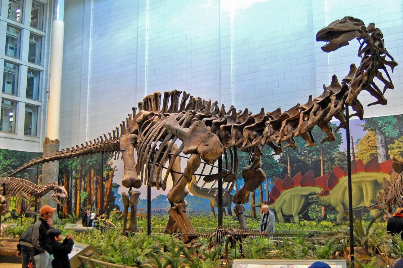 Динозавры-низкорослики