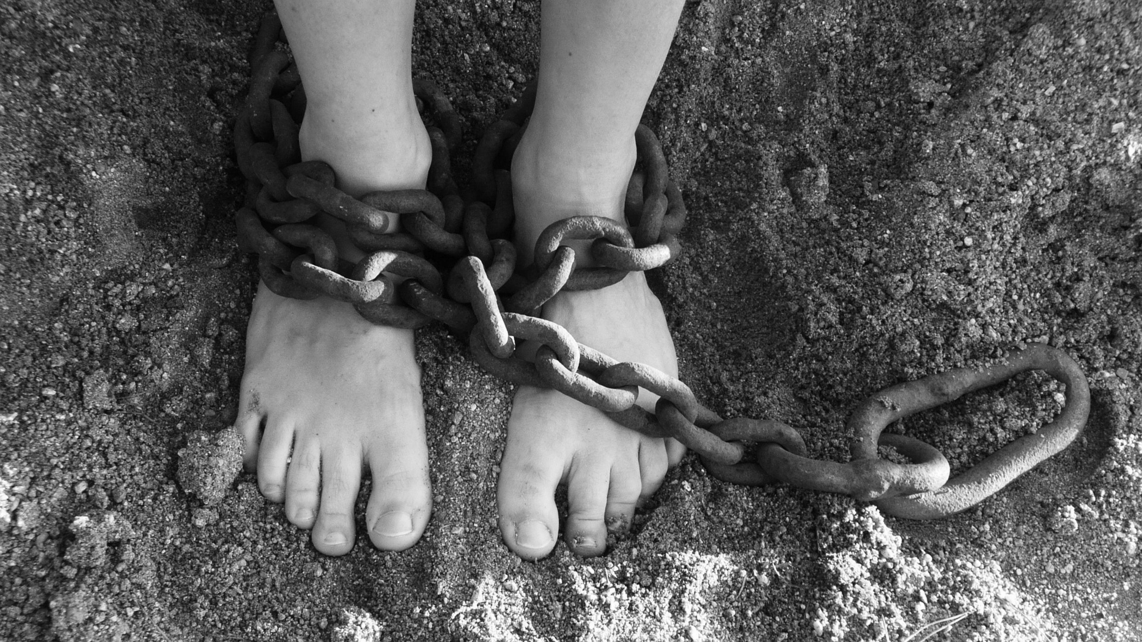 Шимпанзе и шестилетние дети захотели увидеть справедливое наказание обидчика
