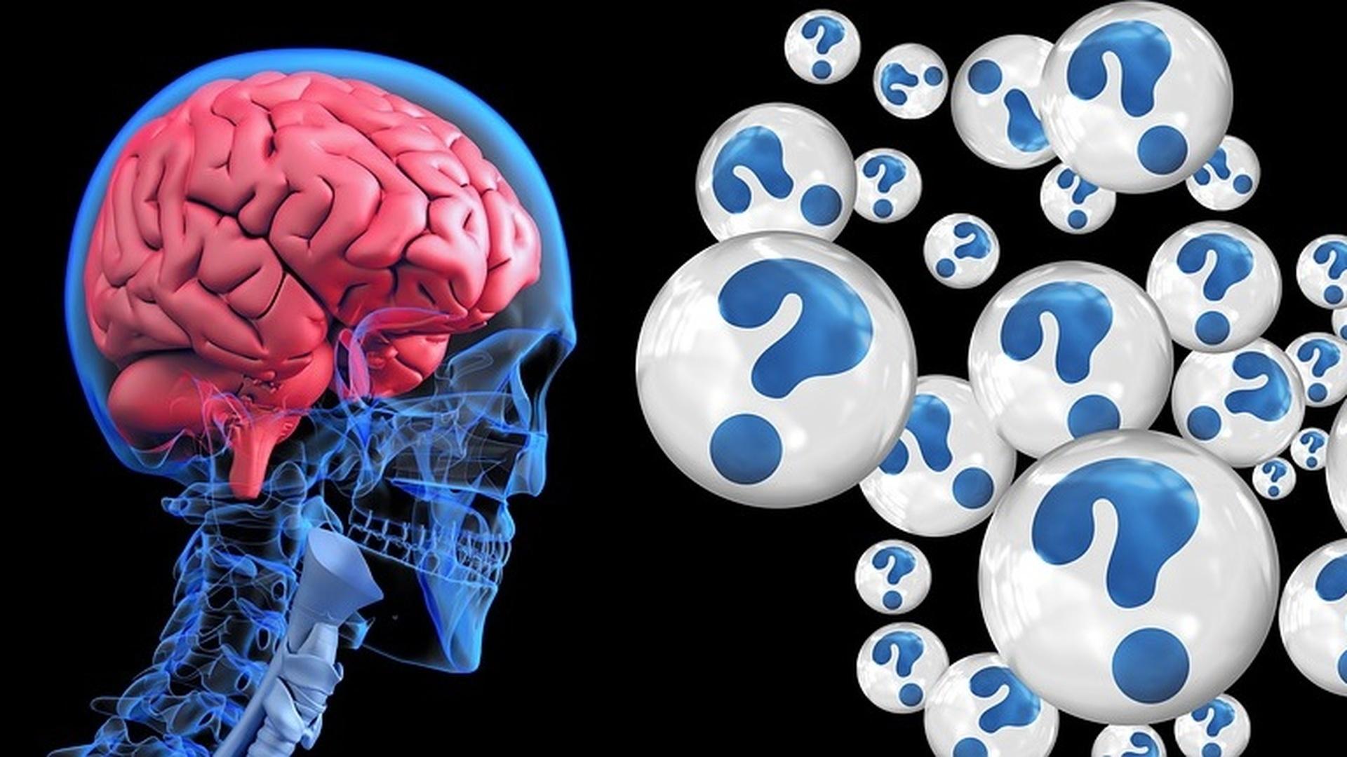 Чтобы сохранить новые воспоминания, медленные и быстрые мозговые волны во время глубокого сна должны синхронизироваться в нужный момент