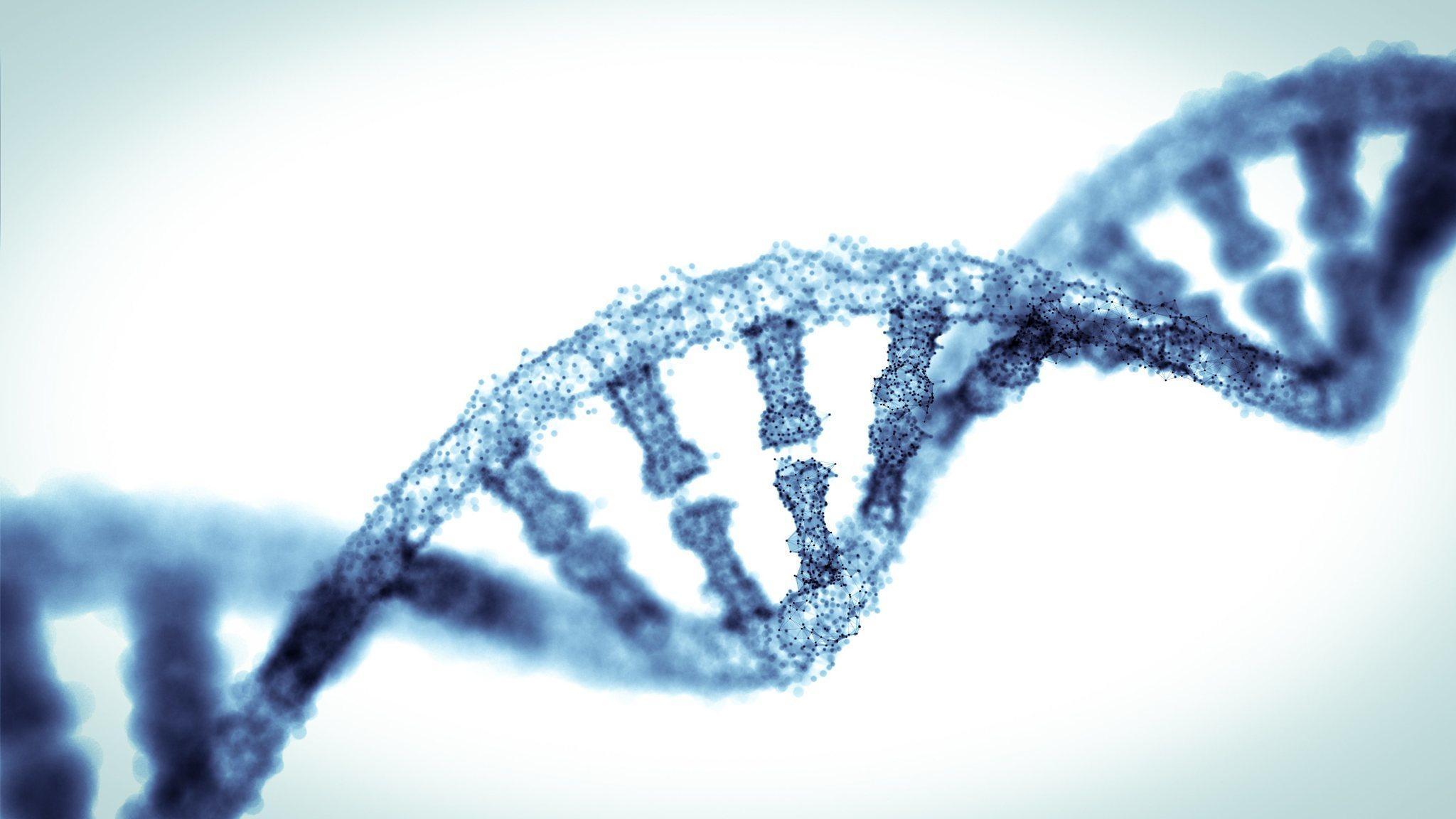 Метод очистки генома от ВИЧ опробовали на грызунах