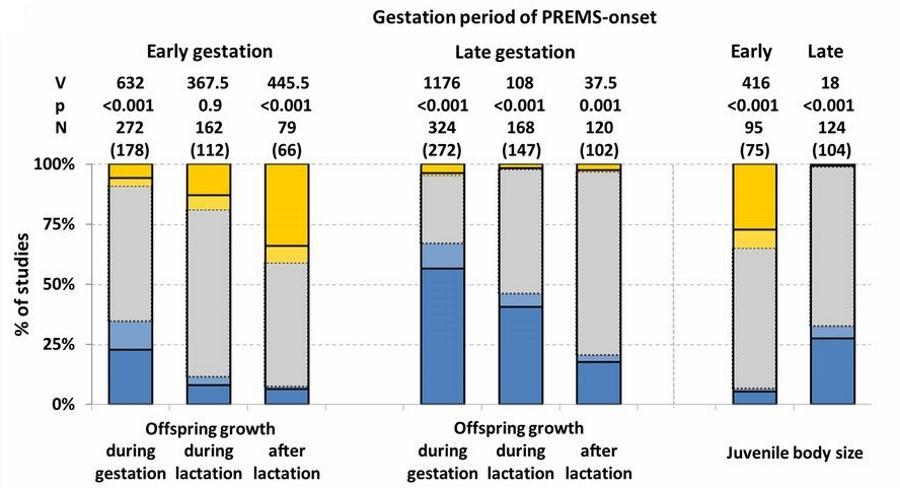 Стресс в начале беременности ускорил рост потомства