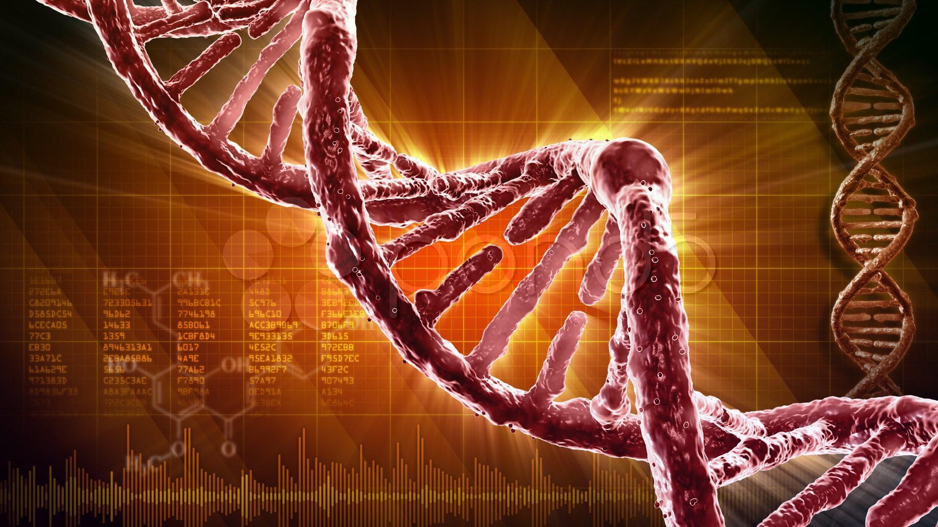 Генетическому алфавиту добавили две буквы