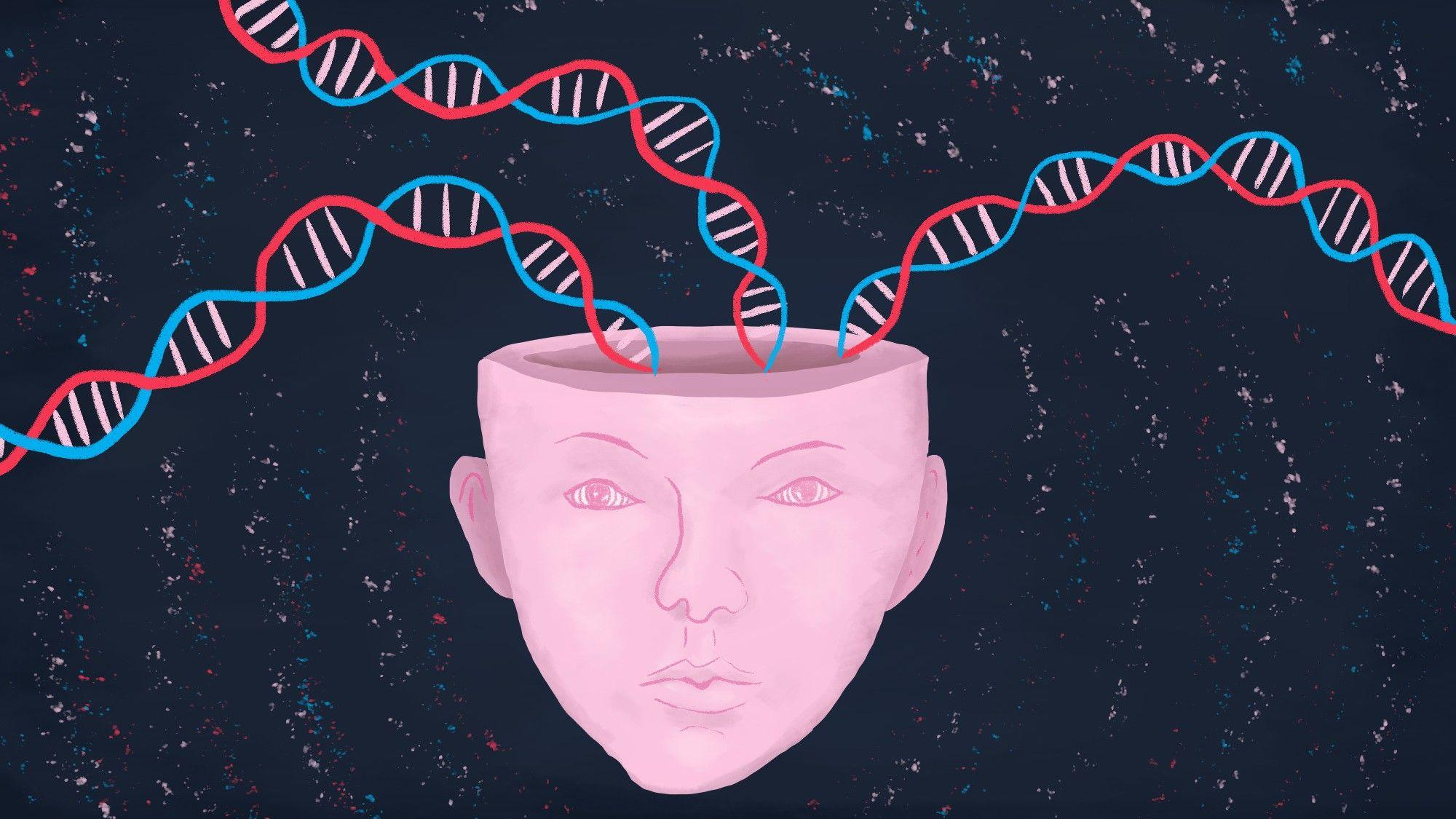 Хотя гены влияют на интеллект, мы не можем усовершенствовать ум
