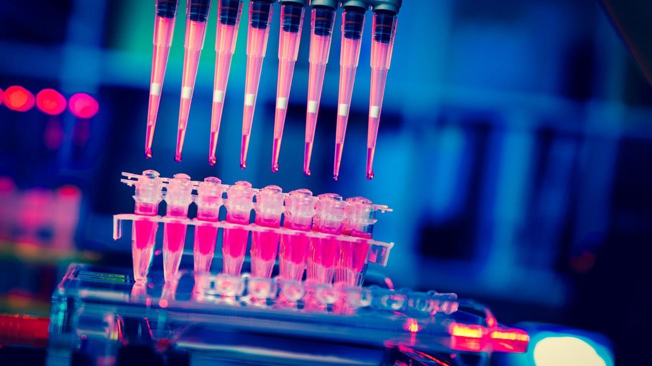 в лечении рака обещают скорую революцию