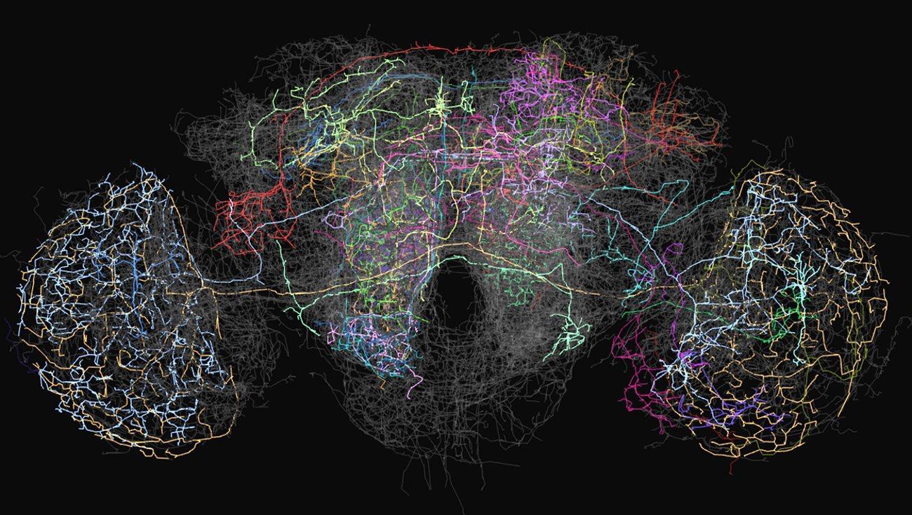 искусственный интеллект и Джеффри Хинтон