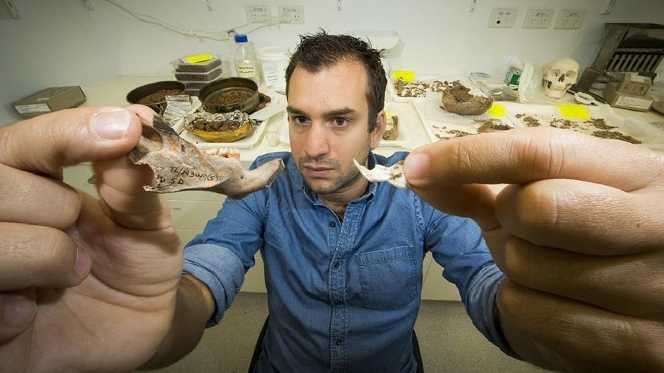 найдены останки крупнейшего из известных науке грызунов