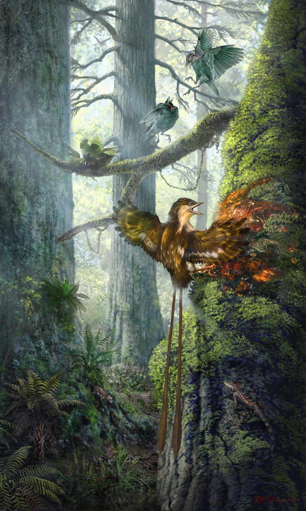 в янтаре обнаружили два прекрасно сохранившихся крошечных крыла эпохи динозавров