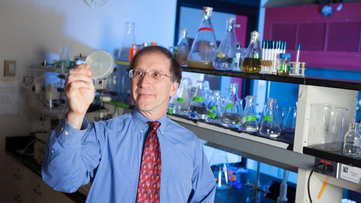 найден первый синтетический фермент – катализатор искусственной жизни