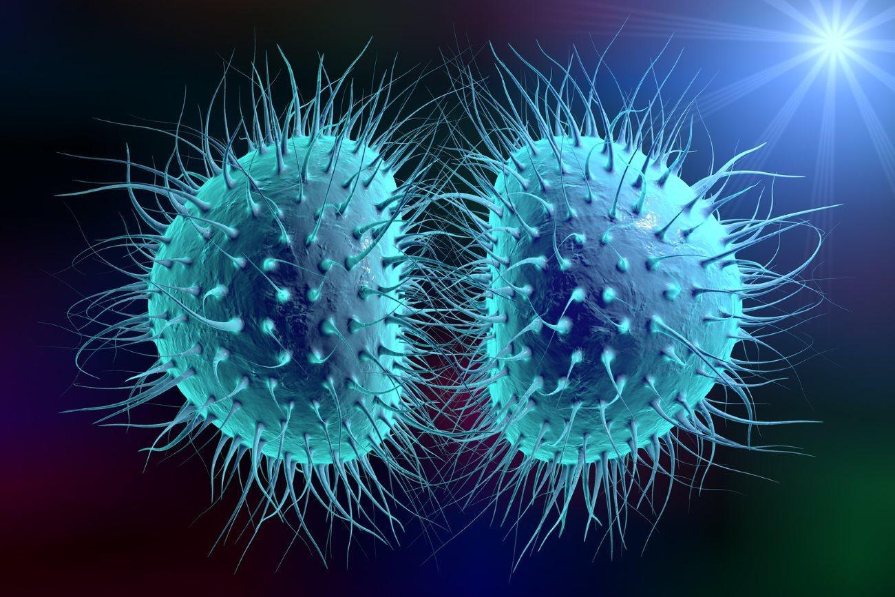 Четыре половые инфекции, о которых вы не знали