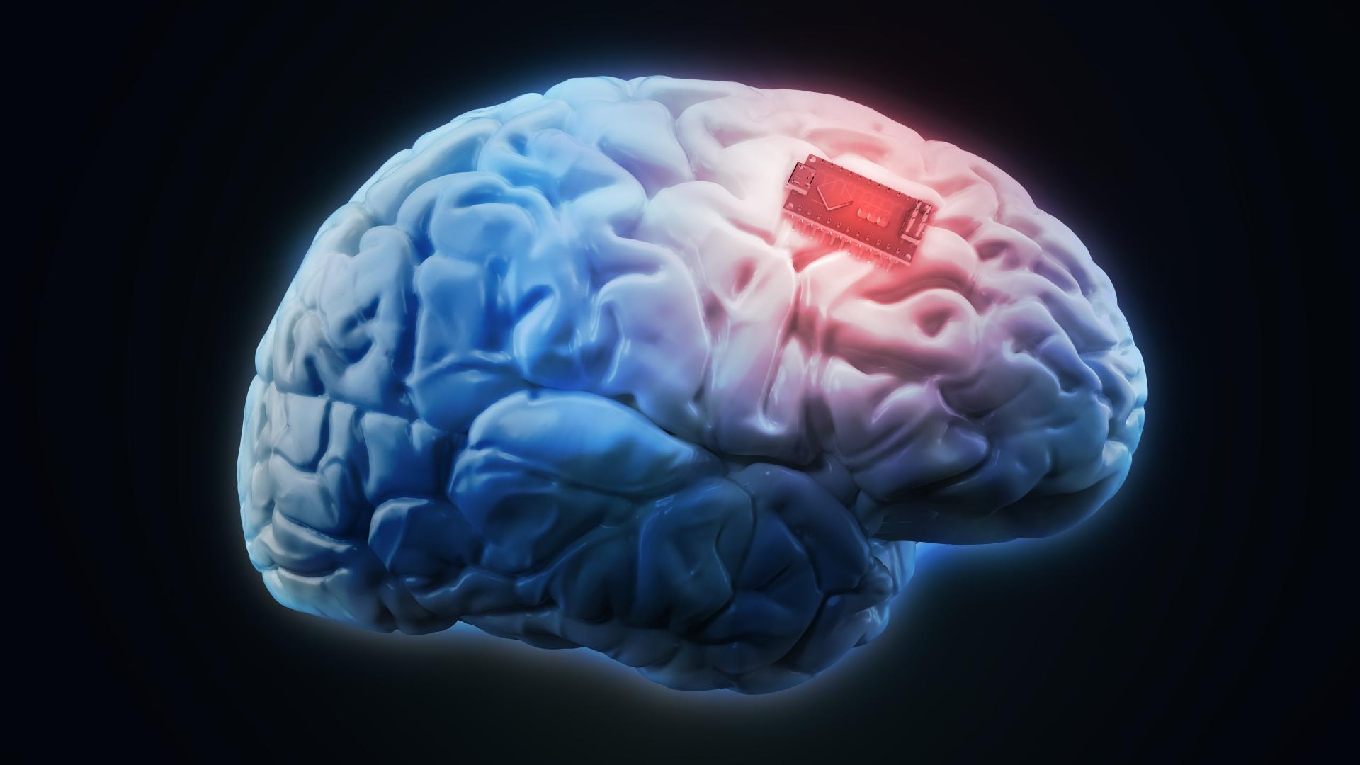 Нейробиологи могут подарить нам вечное блаженство. Но хорошо ли это?