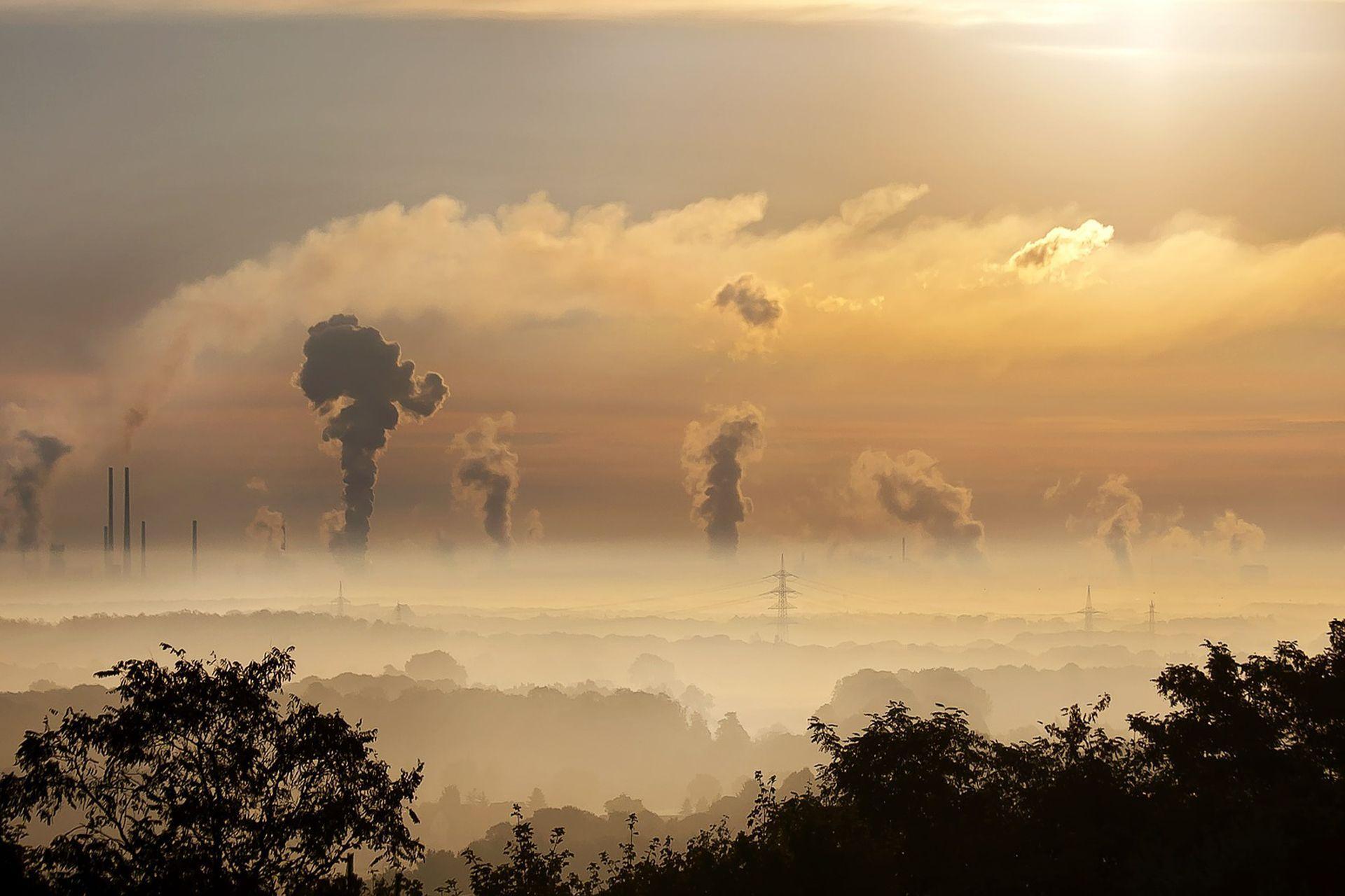 Частицы углерода из загрязнённого воздуха проникают даже в плаценту
