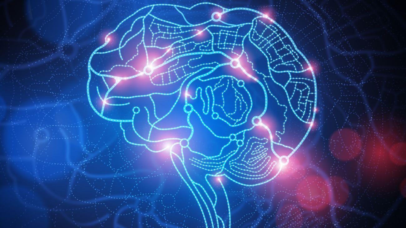 Как мозг находит «иголку в стоге сена»?
