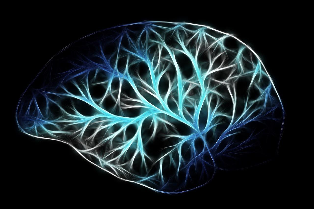 Как развить интеллект