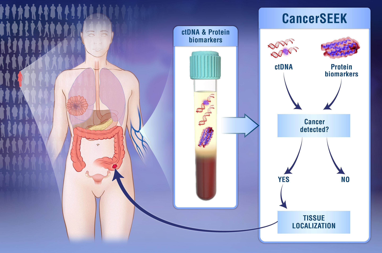 Сколько видов рака можно увидеть в капле крови
