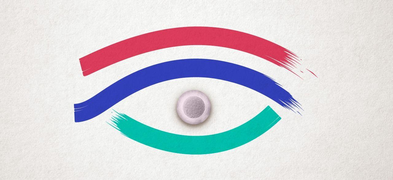 «Третий глаз» для изучения нейрогенеза