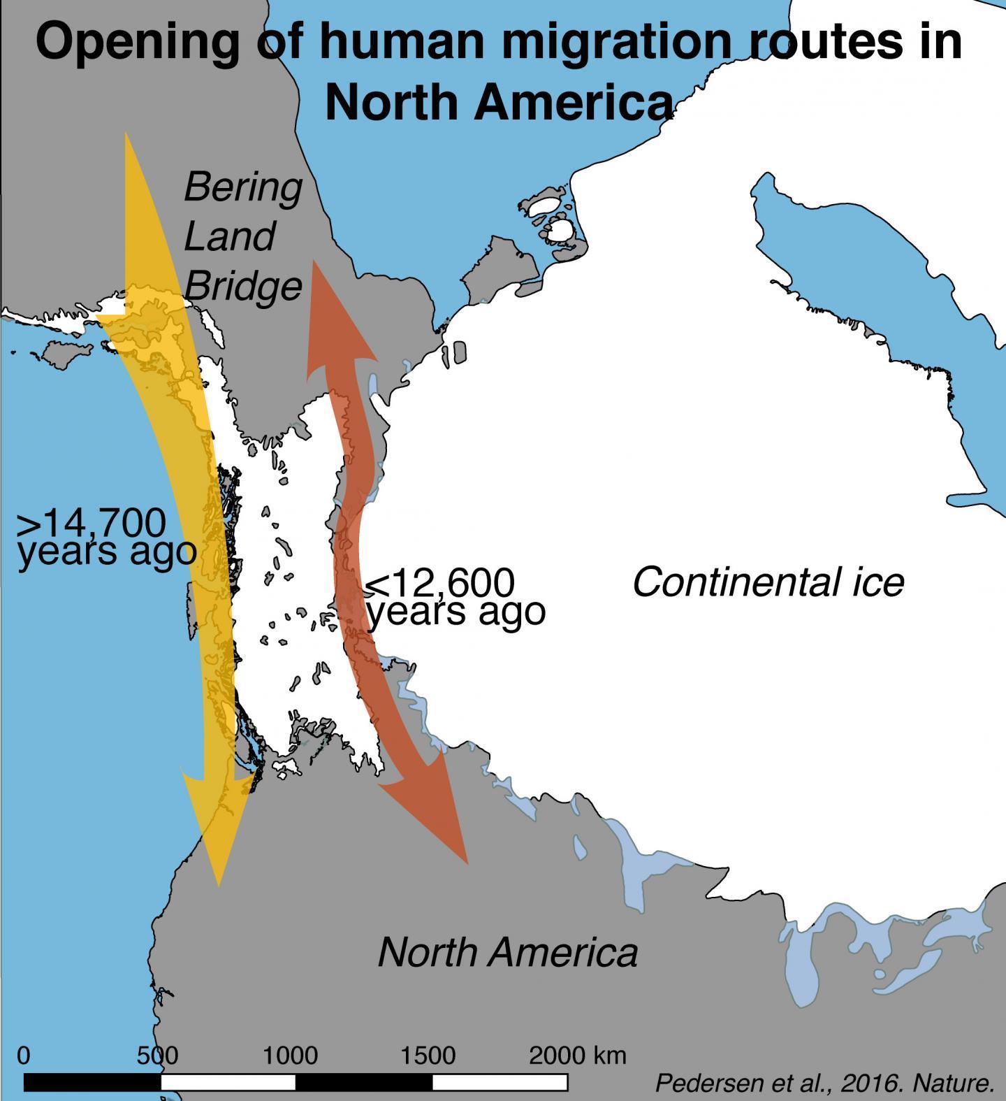 Учёные опровергли традиционную историю заселения Америки