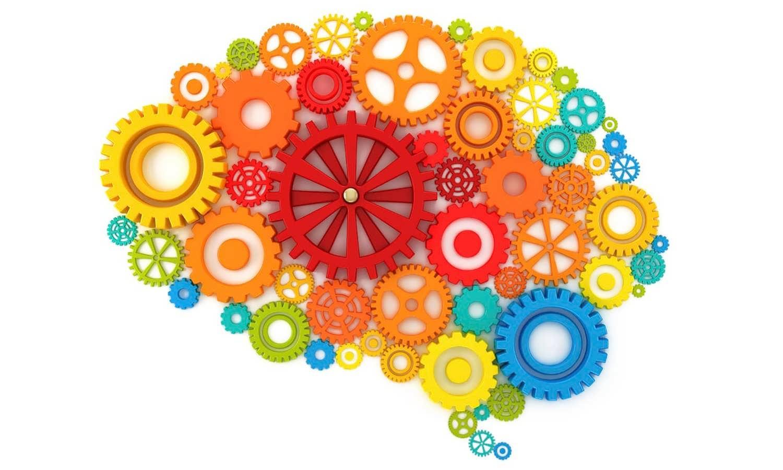 Как нервные клетки считают числа