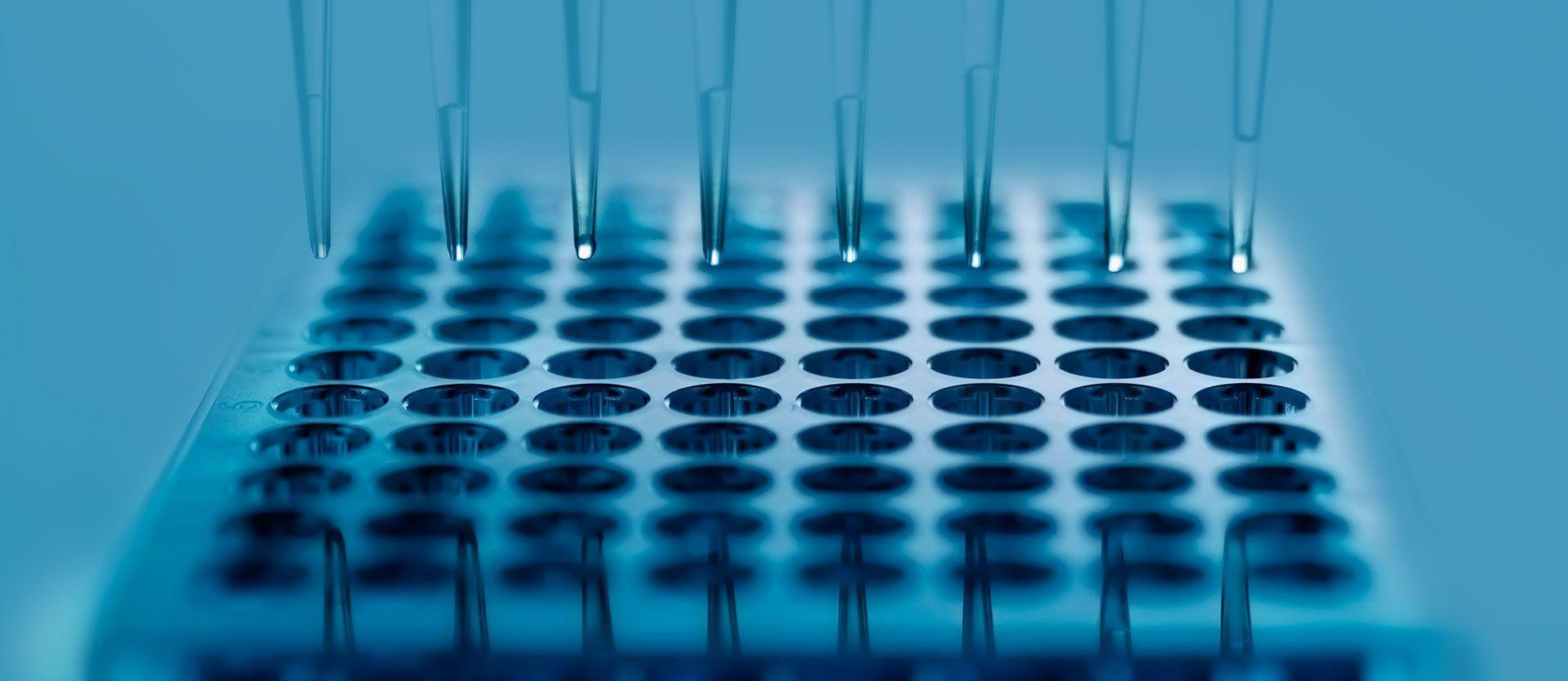 Новые исследования дают надежду на долгожданную вакцину от сифилиса