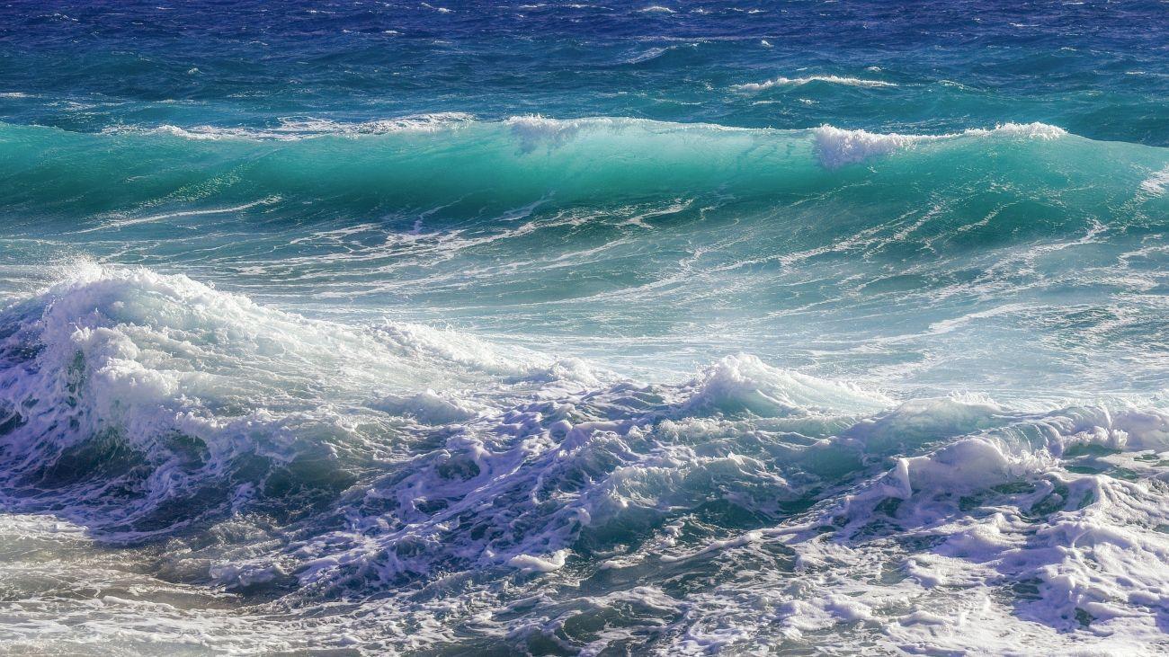 Неизвестный науке вирус найден в океане