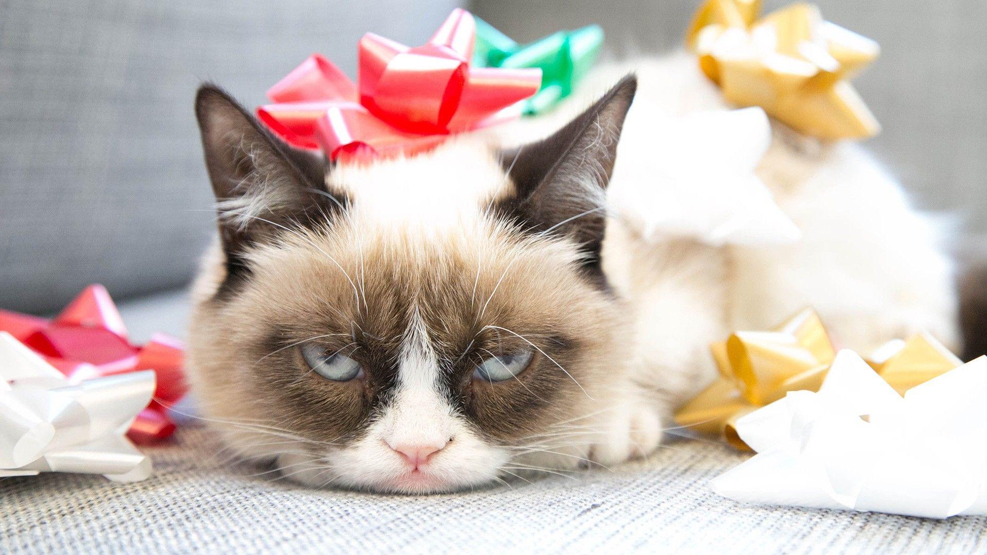 За что ненавидят день рождения: усталость, депрессия и самоубийство