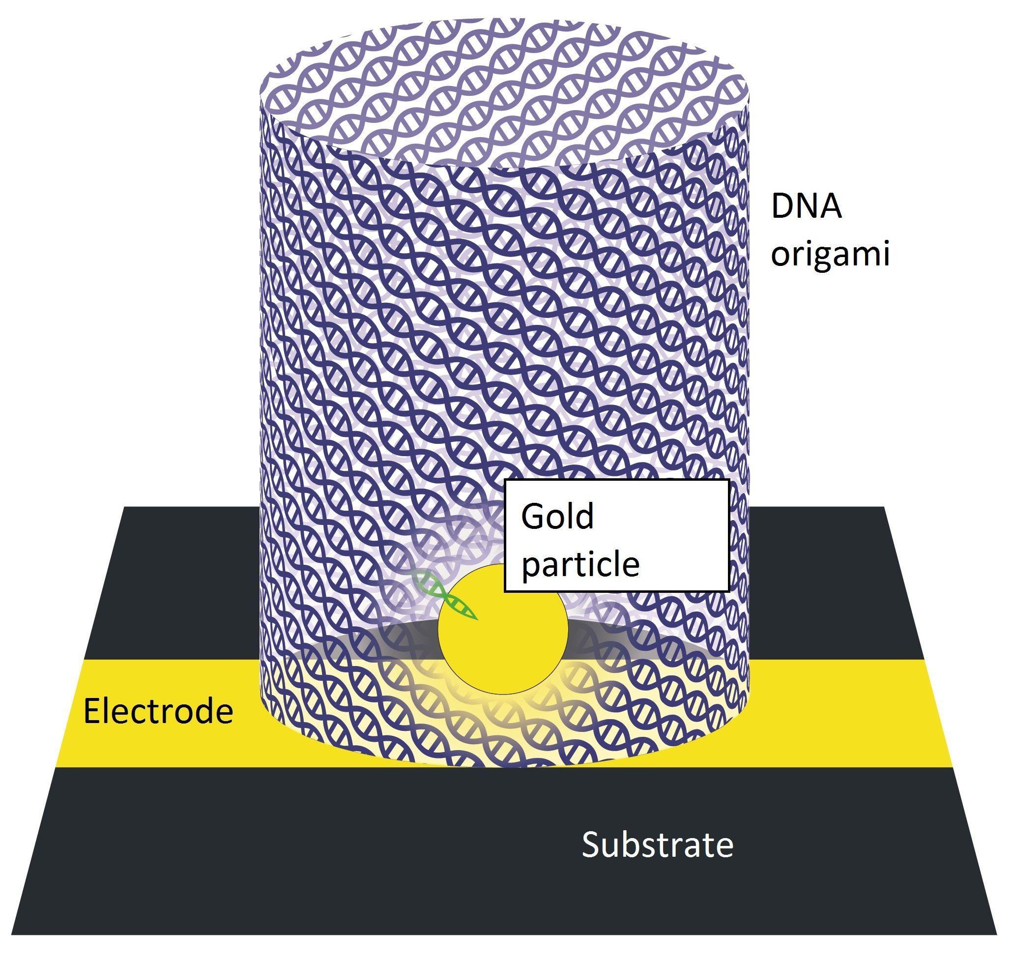 ДНК-оригами привлекли для создания микрочипов