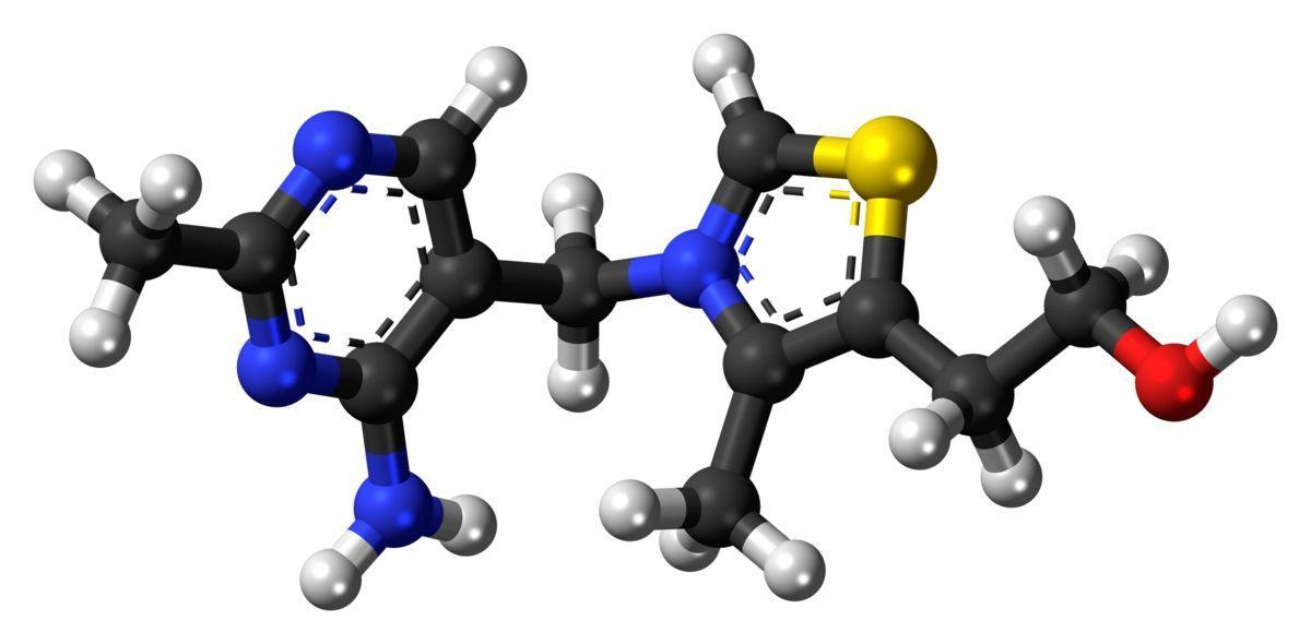 Новые нейропротекторные свойства витамина В1