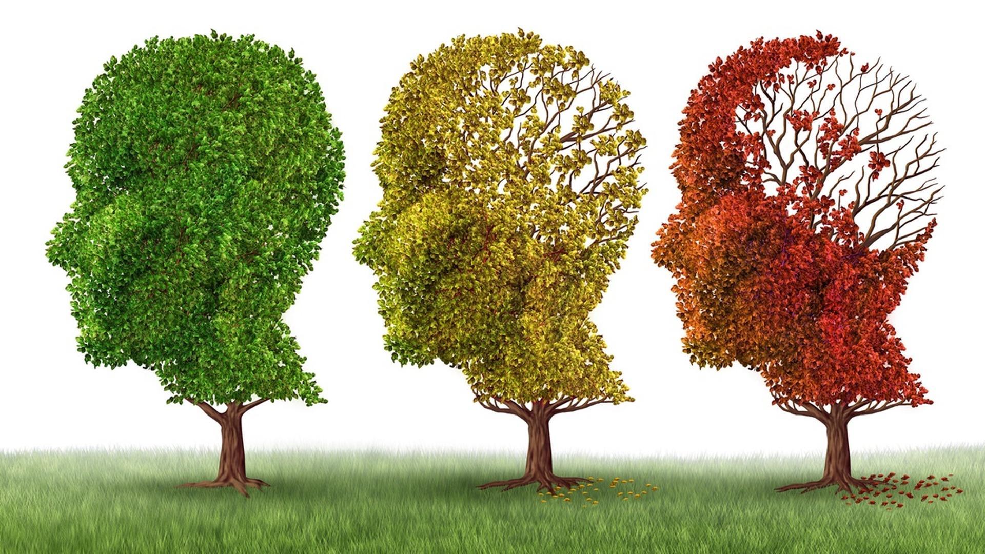 Препарат от сахарного диабета улучшил память мышам с болезнью Альцгеймера