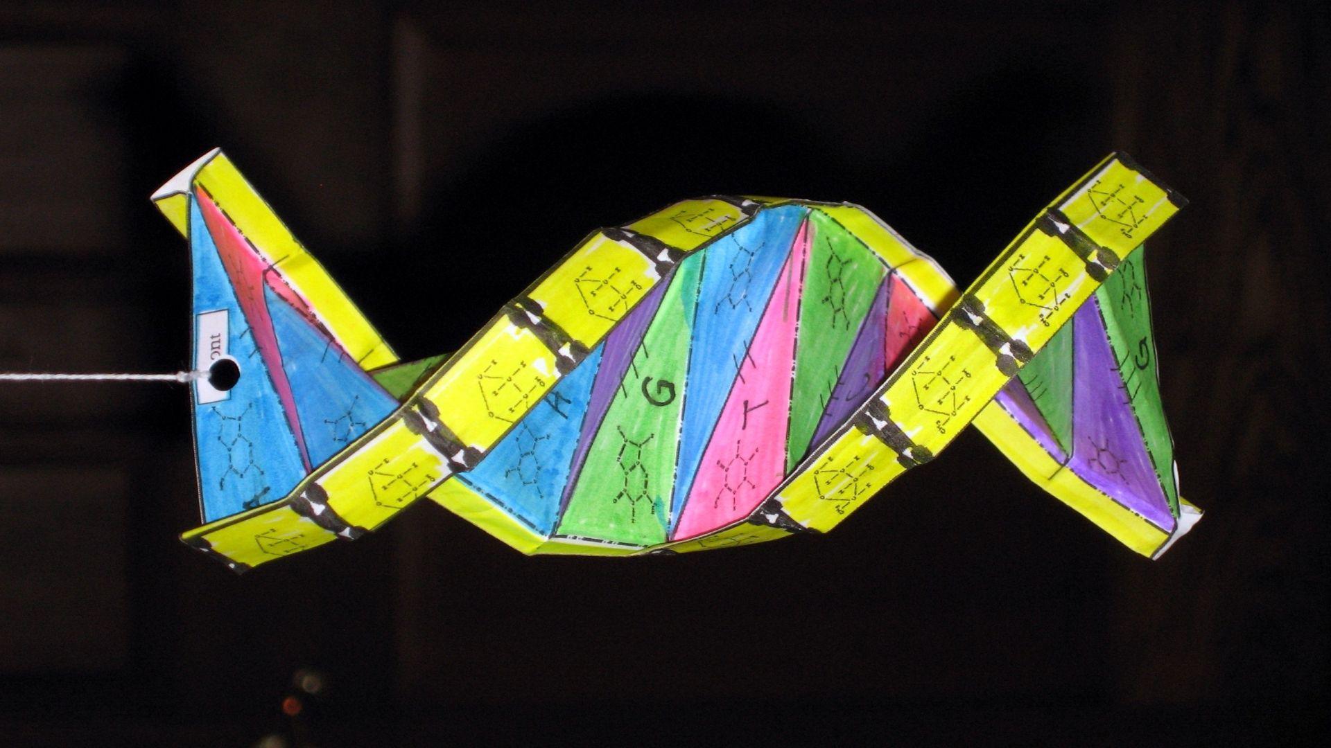 Нанороботы из ДНК-оригами отыщут опухоль и перекроют ей кислород